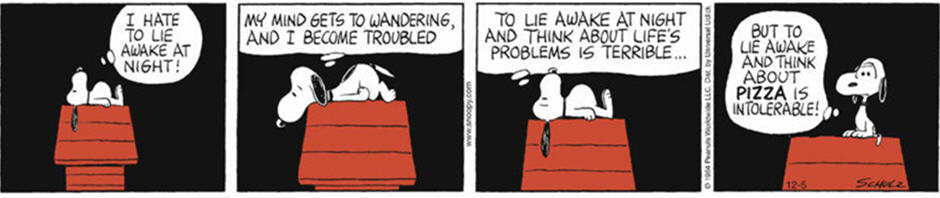 Image of a Peanuts comic strip of Snoopy having insomnia.
