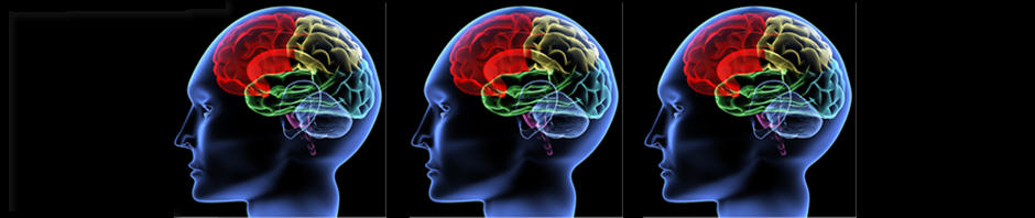 Brain Graphic Banner