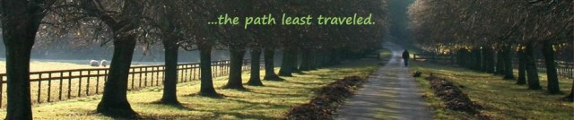 Photograph of a Traveler along the Mystical Path of Life.