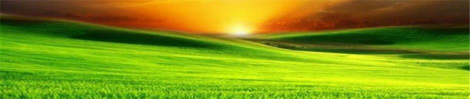 Sunlight over the Hill (WP banner)
