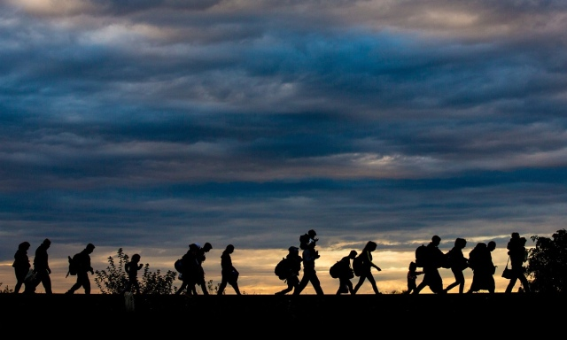 Picture of Refugees from the Middle East Trekking over Serbia and Hungary to Enter Western Europe
