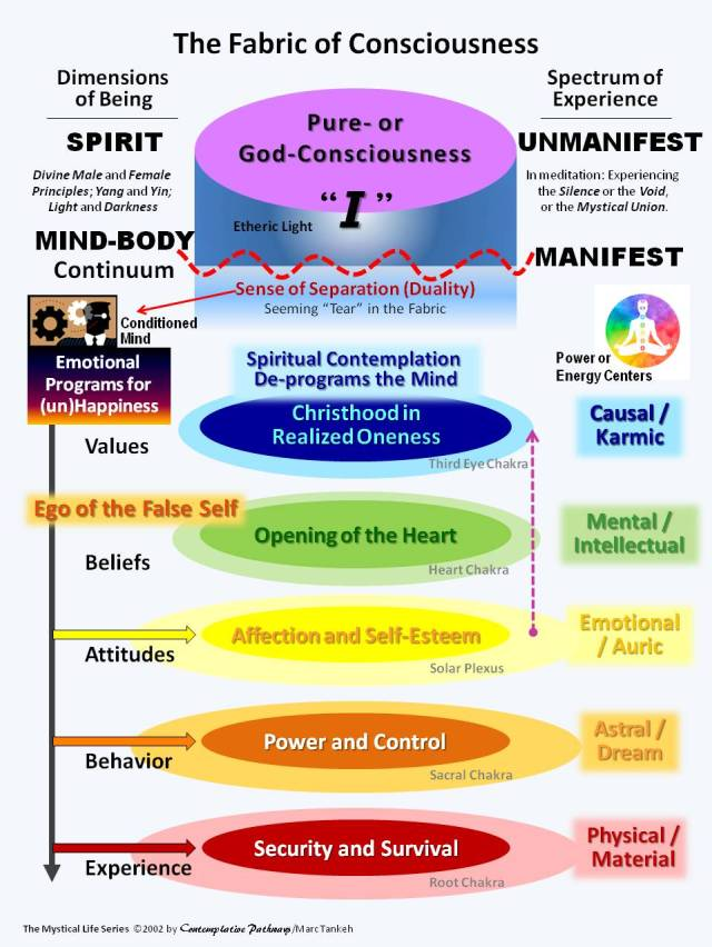 Chart:  The Fabric of Consciousness