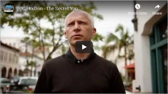 "Graphic for ""The Secret You"""
